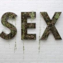 Sex Bucket List