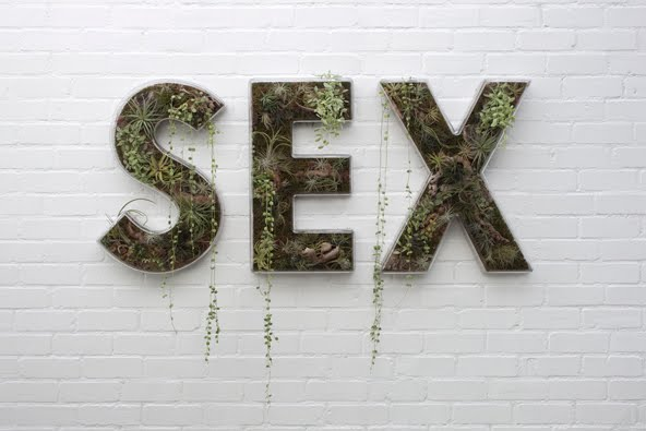 doug-aitken-sex-succulents-text-art